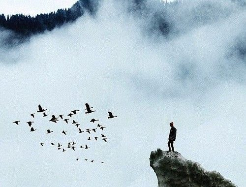 man-on-mountain-with-birds