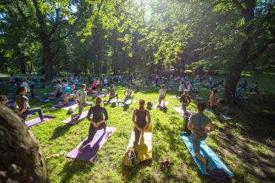 Йога в парку